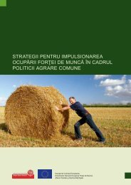 strategii pentru impulsionarea ocupării forţei de muncă în cadrul ...
