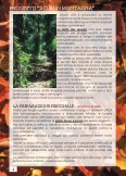 Sicuri a cercar funghi - CAI Sicilia - Page 5