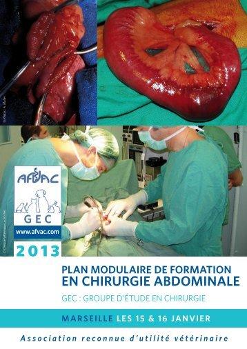 plan modulaire de formation en chirurgie abdominale - AFVAC