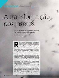 A transformação dos insetos - Revista Pesquisa FAPESP