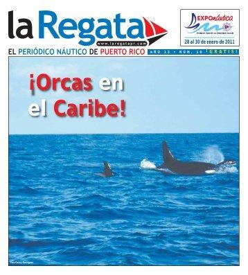 28 al 30 de enero de 2011 - La Regata