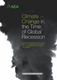 Climate Change in the Time of Global Recession - Carbon ...