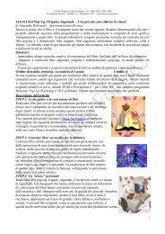 12.b14 Libri Pop-Up, Origami, Sagomati… Una piccola casa editrice ...