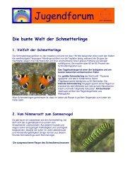 Schmetterlinge Druckversion 2 - Jugendforum Mithila