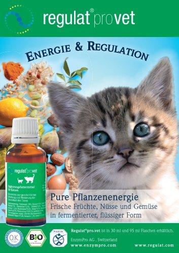Ergänzungsfuttermittel für Katze - guterrat.net