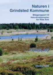 Grindsted - Billund Kommune