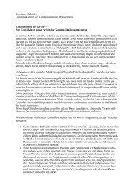 Statament Schreiber - IRS