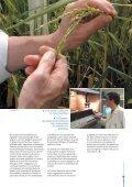 La plate-forme de recherches avancées Agropolis La plate-forme de ... - Page 7