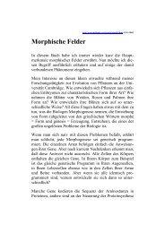 Sheldrake, Rupert (1999): Morphische Felder.