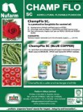 April Issue - Hortinews.co.ke - Page 7