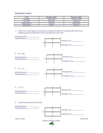 sample genetics quiz jdenuno. Black Bedroom Furniture Sets. Home Design Ideas