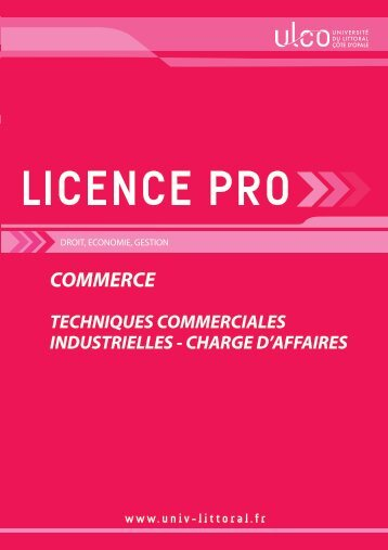 Licence pro Techniques Commerciales Industrielles - Université du ...