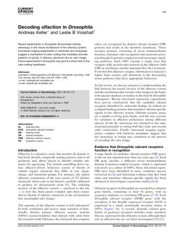 Decoding olfaction in Drosophila - Laboratory of Neurogenetics and ...