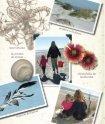 Un diario para mi hija La tortuga de verano - Sylvan Dell Publishing - Page 6