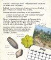 Un diario para mi hija La tortuga de verano - Sylvan Dell Publishing - Page 7