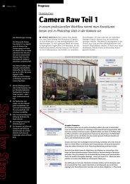 Camera Raw Teil 1 - Publisher