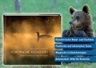 Flyer Nordische Momente - TiPP 4 Werbeagentur Verlag