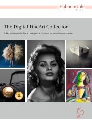 download a Hahnemuhle Digital Fine Art brochure - tastarsupply