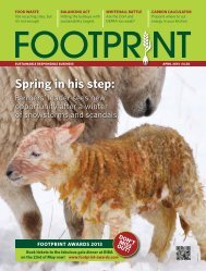 Download Foodservice Footprint Issue 21 April 2013