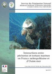 télécharger le document - Réseau des tortues marines de Guadeloupe