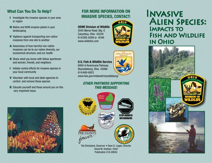 harmful non native species Invasive species basics invasive species are harmful non-native species that can cause serious damage to our environment and economy once introduced and established, these species are difficult and costly to eradicate or control.