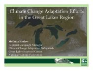 Climate Change Adaptation Efforts in the Great Lakes Region