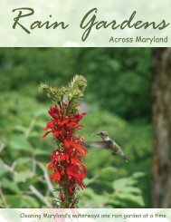 Rain Gardens Across Maryland - College of Agriculture & Natural ...