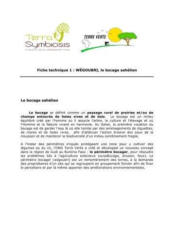 Téléchargez le PDF « Wegoubri - Terra Symbiosis
