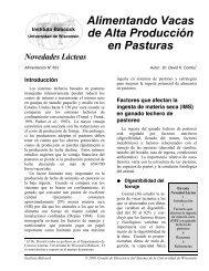 Alimentando Vacas de Alta Producción en Pasturas - Babcock ...