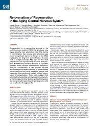 Rejuvenation of Regeneration in the Aging Central Nervous System