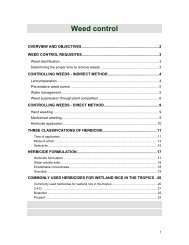 Weed control - Rice Knowledge Bank