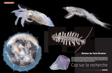 Téléchargez l'article de Planète International - Eté 2012 (pdf - 1001Ko)