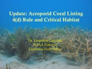 Acroporid Coral Listing 4(d) Rule and Critical Habitat - U.S. National ...