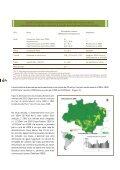 DESMATAMENTO NA AMAZÔNIA: - Fundação Brasileira para o ... - Page 4