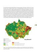 DESMATAMENTO NA AMAZÔNIA: - Fundação Brasileira para o ... - Page 5