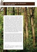 DESMATAMENTO NA AMAZÔNIA: - Fundação Brasileira para o ... - Page 6
