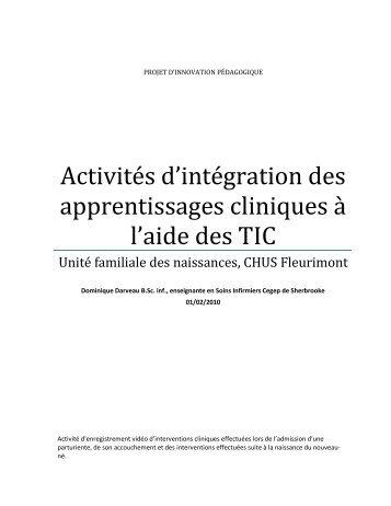 Activités d'intégration des apprentissages cliniques à l ... - aeesicq