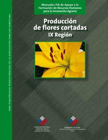 Producción de flores cortadas IX región