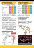 Fussball 2012 - ViW - Seite 7