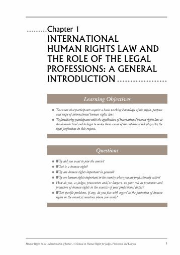 international human rights law and the role of the legal professions