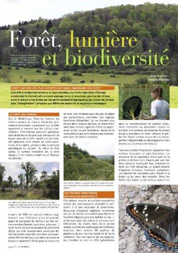 Forêt, lumière et biodiversité - Natagora