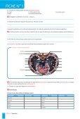 Fonctions de nutrition - Decitre - Page 3