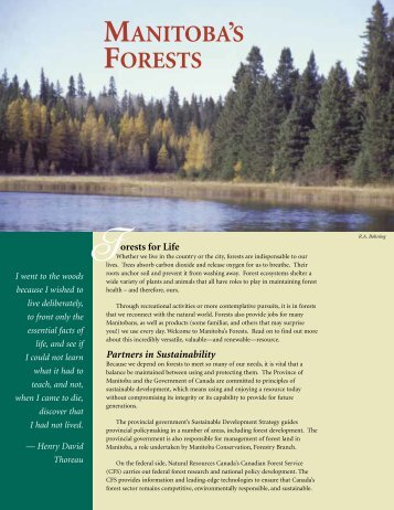 Manitoba's Forests - Manitoba Forestry Association
