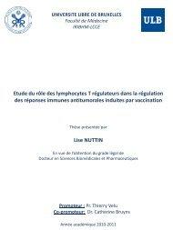 Etude du rôle des lymphocytes T régulateurs dans la régulation des ...