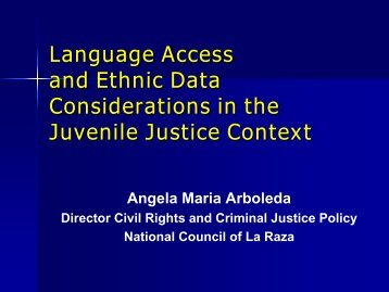 Language Access and Ethnic Data Considerations in the Juvenile ...