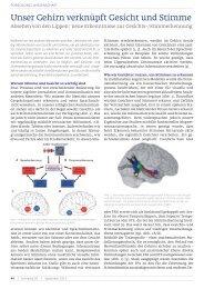 Unser Gehirn verknüpft Gesicht und Stimme - Schnecke Online