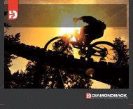 TWO THOUSAND SEVEN - Diamondback Bicycles