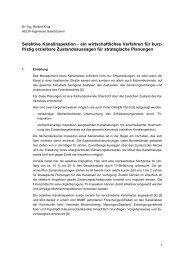 Selektive Kanalinspektion - ein wirtschaftliches Verfahren für kurz ...