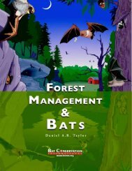Forest Management and Bats - Trinity Waters