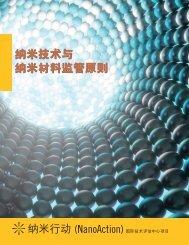 纳米技术与纳米材料监管原则纳米技术与纳米材料监管原则